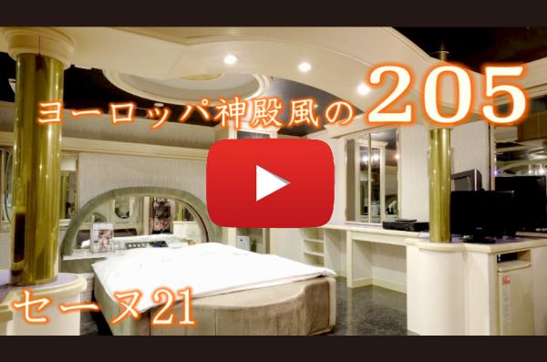 205号室 動画