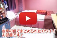 206号室 動画